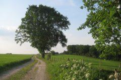 Sl4 – Gulpen-Wittem - Slenaken