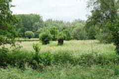 Wandelroute V14 - Vaals - Van Camerig tot Cottessen
