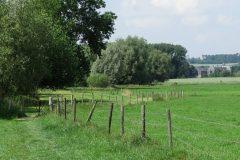 Wandelroute Wi12 De Geul van Mechelen naar Partij